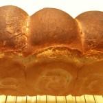 いろいろ作ったパンたち。2010、夏、その1。