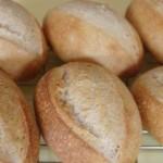 自家製酵母で全粒粉クッペ(リーンのパンちょっとだけ上達?)