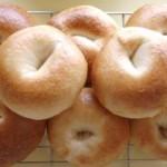 プレーンベーグル(自家製酵母&国産小麦)